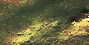 Evidence of life on Mars ?
