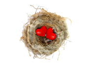 EmptyNest-2hearts.png